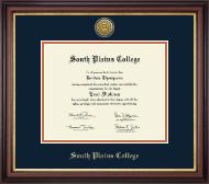 Gold Engraved Medallion Diploma Frame in Regency Gold