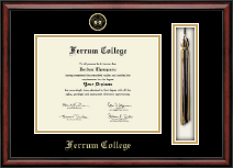 Ferrum College Tassel Edition Diploma Frame in Southport